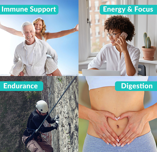 Immune Support, Energy and Focus, Endurance, Digestive Support