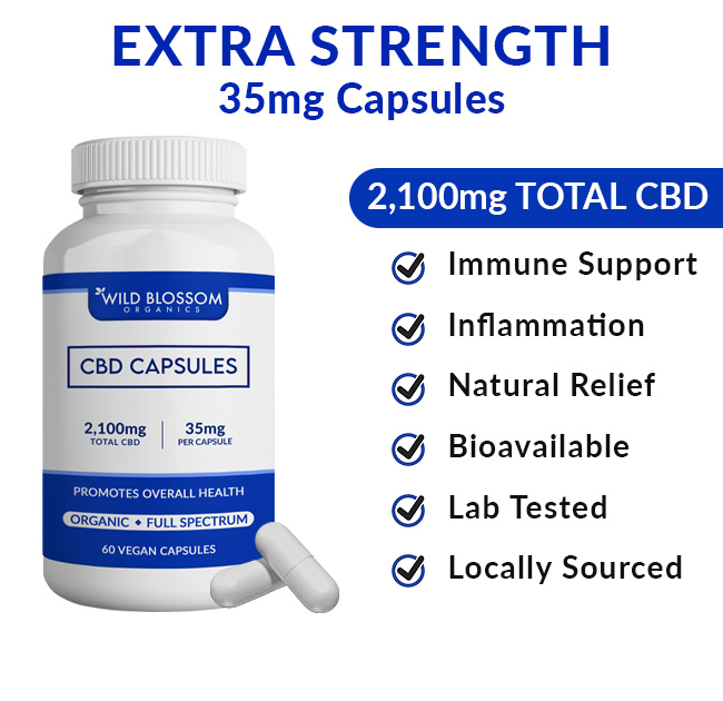 CBD Capsules Bottle - 2,100mg total cbd - immune support - natural relief - lab tested - locally sourced