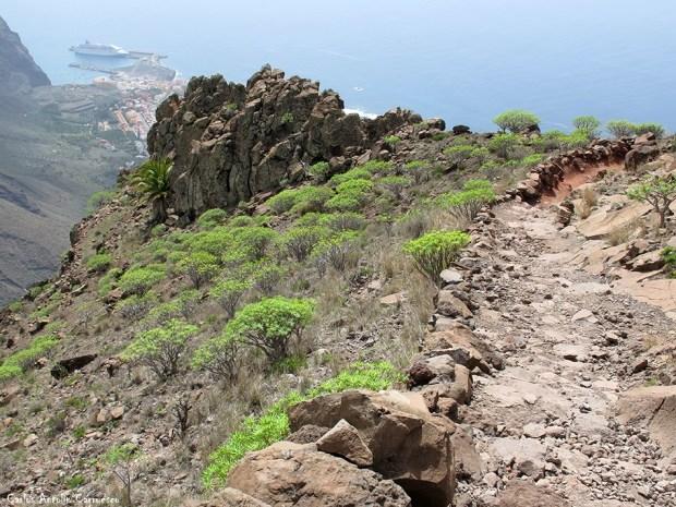 Valle Gran Rey - Puerto de Vueltas - La Gomera