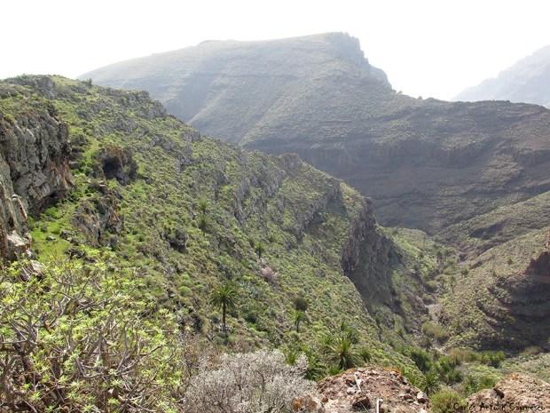 Gerián - Argaga - La Gomera
