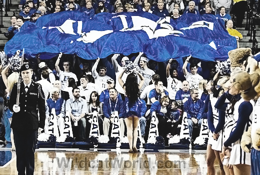 Kentucky Fans - photo by Tammie Brown | WildcatWorld.com