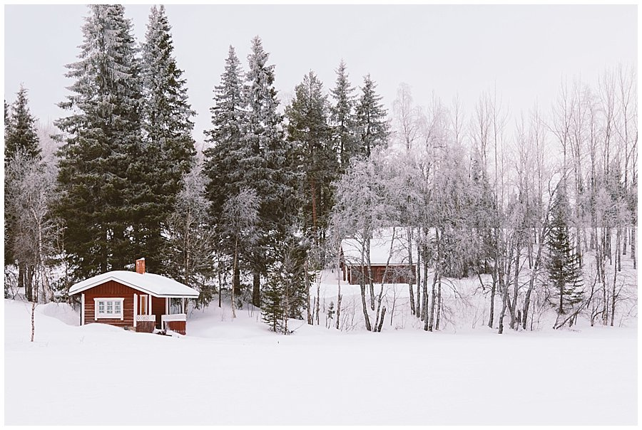 Red wooden cabins amongst the trees in Levi Finland by Wild Connections Photography