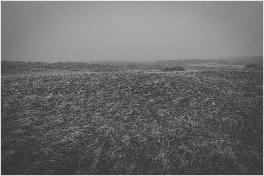 Image of a field in Iceland as snow starts to fall