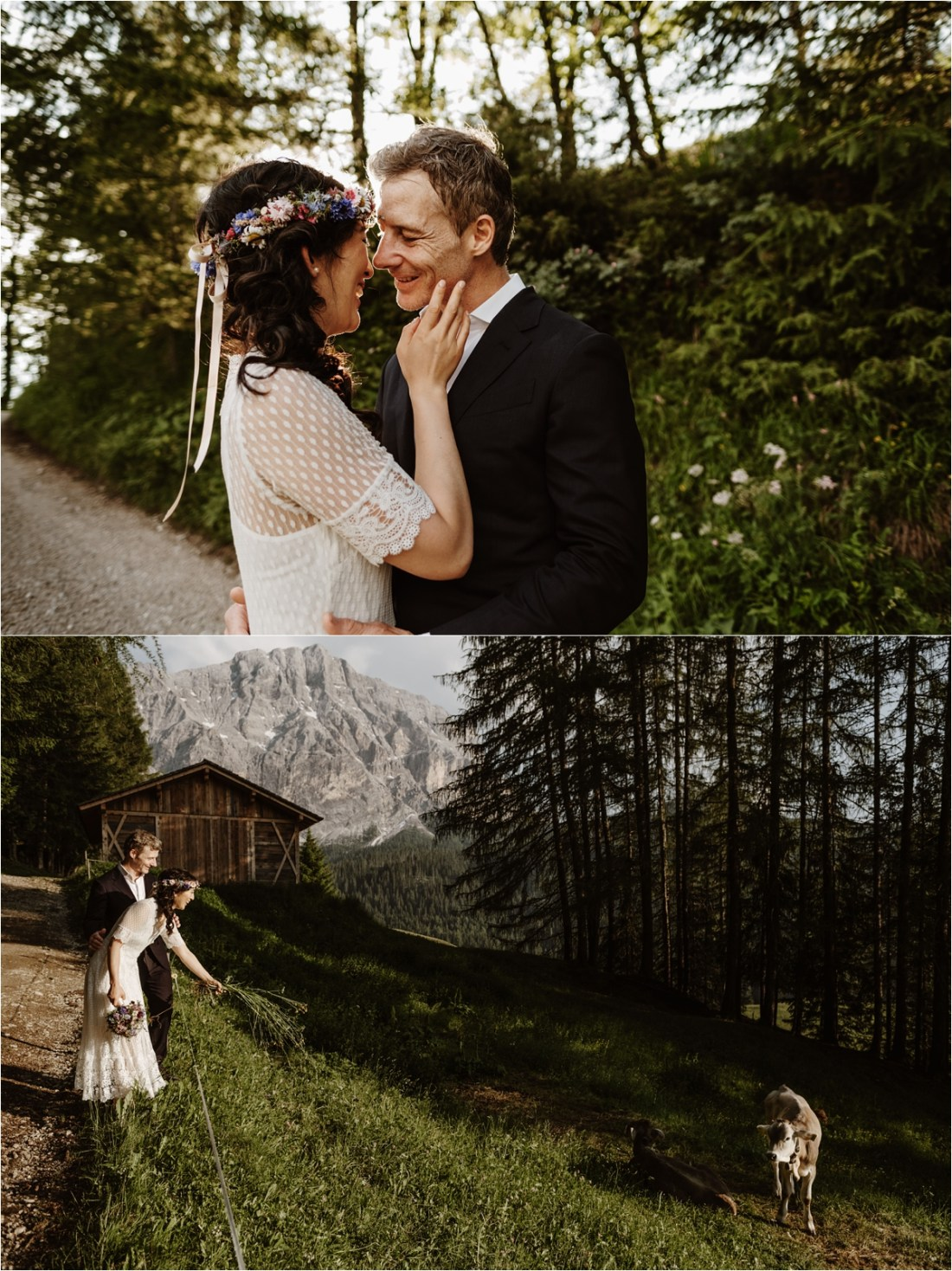 The bride and groom find baby cows in a meadow in the Dolomites. Photo by Wild Connections Photography