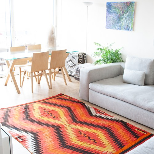 Large Orange Area Rug