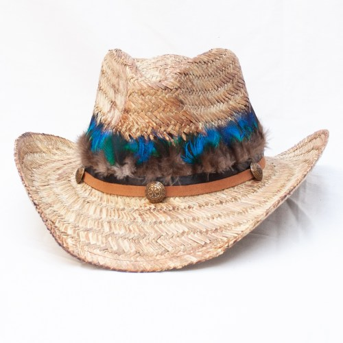 Blue Brown Feather Hat