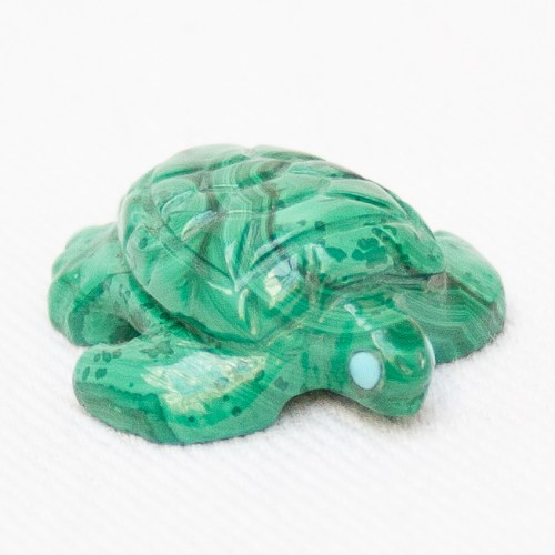 Small Green Malachite Turtle