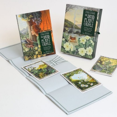 The Druid Plant Oracle - Carr-Gomm