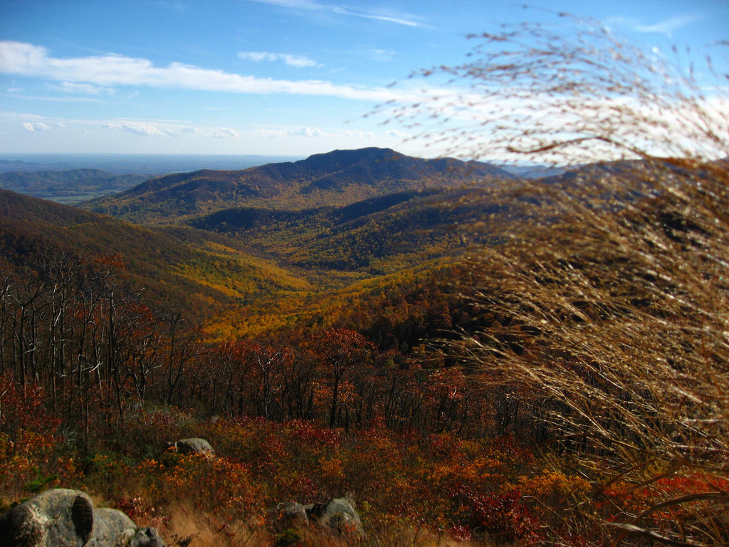 Shenandoah National Park, VA