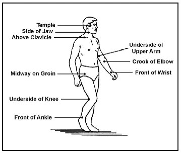 Pressure points on the human body