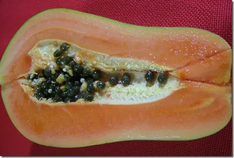 Cross section of a Papaya fruit