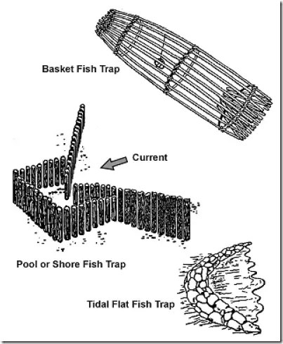 Examples of various fish traps