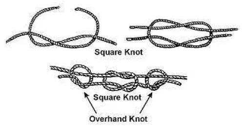Square knot sequence