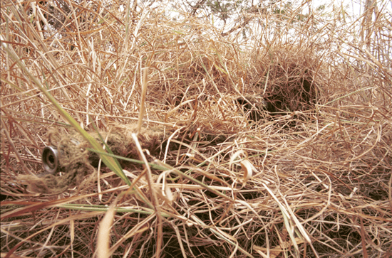 Sniper in ghillie suit to remain hidden in grass