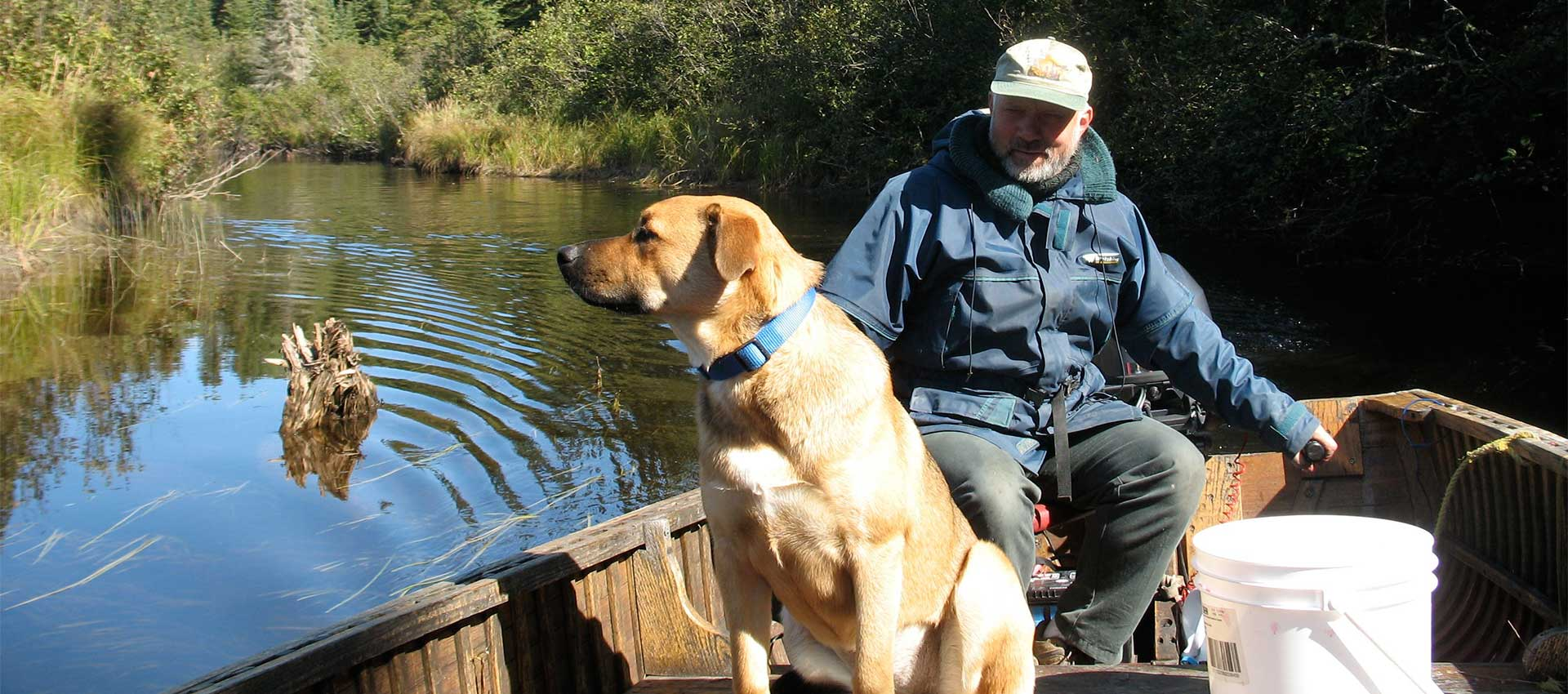 erringtons-pet-policy-header