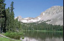 Half-Day-Custom-Pagosa-Scenic-Wildlife-Tour