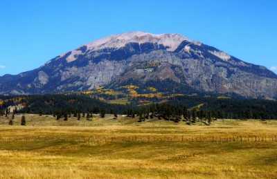 Toner Mt.