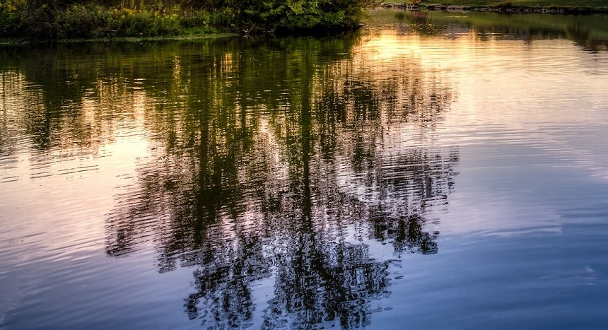 Rolex Lake State Park