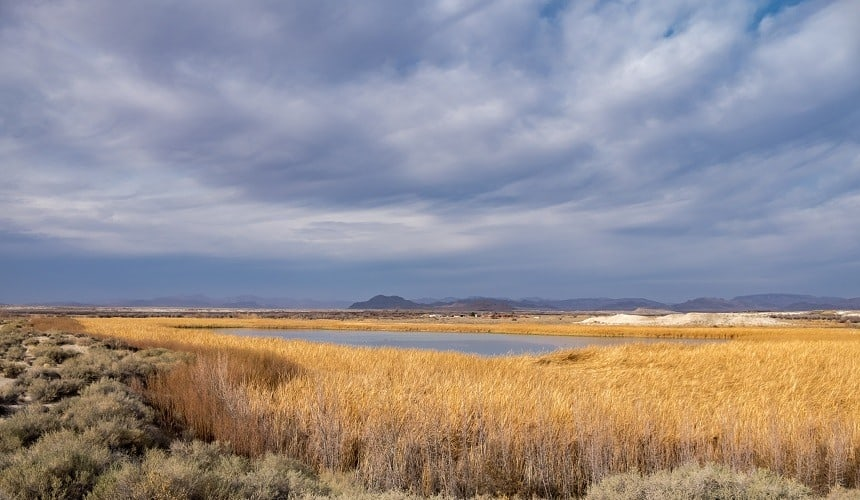 Sheep Creek Reservoir
