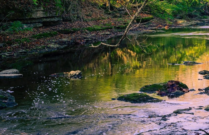 Tygart Creek