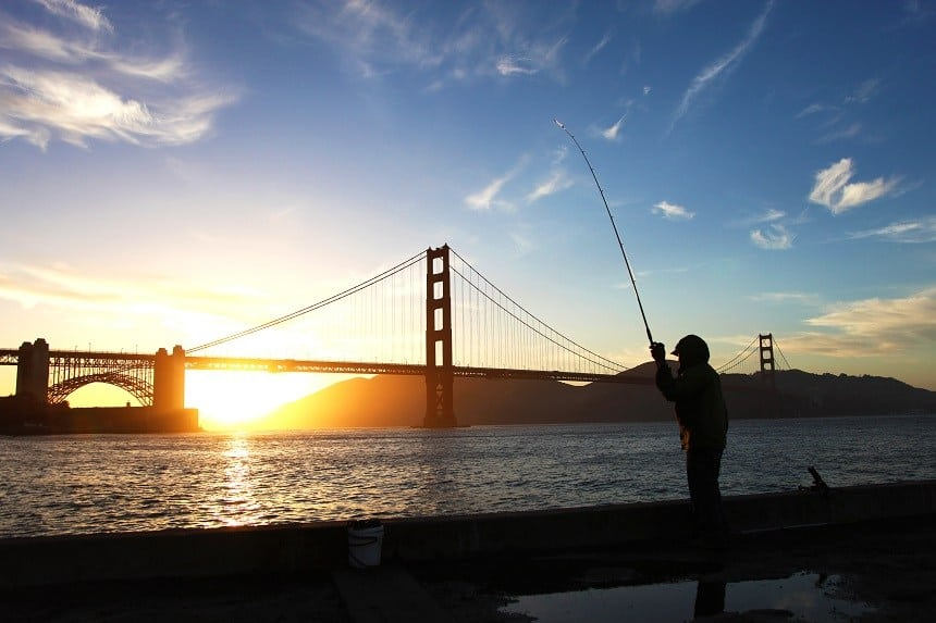 San Francisco Bay Fishing