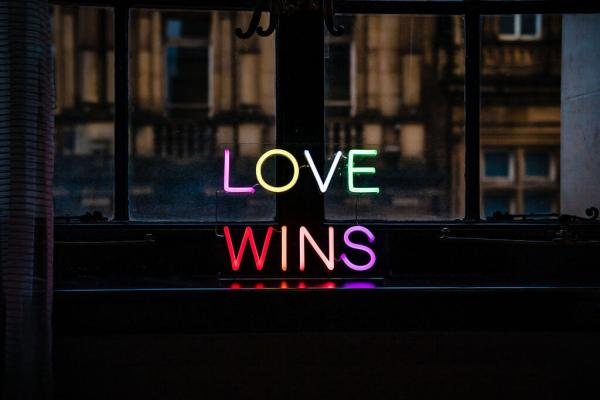 wildfire led neon sign love wins multicolour led sign 1