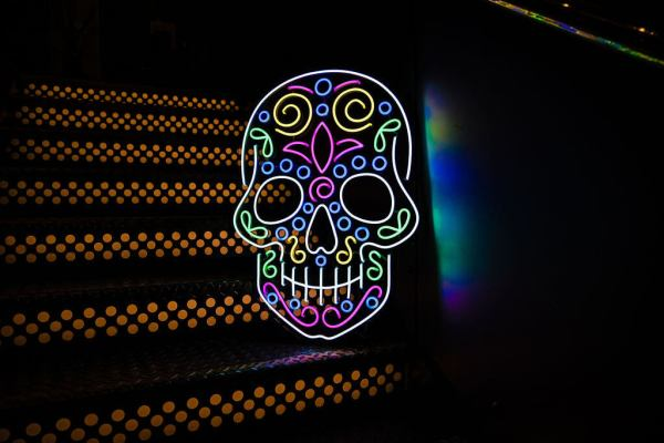 wildfire led neon sign skull Calavera day of the dead multicolour led sign 1