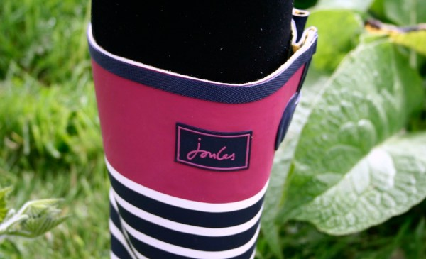 Joules welly