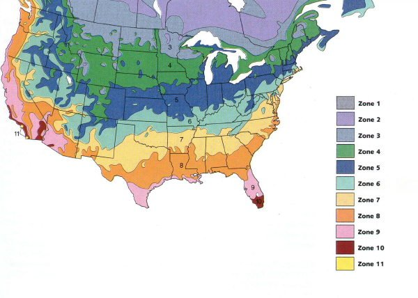 The map is produced by the u.s. Ginseng Zone Map
