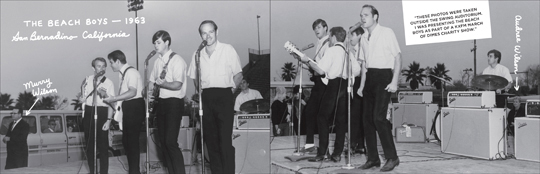 Wild Honey Records ZINE article - Hey Mr. Dee-Jay! Part 3