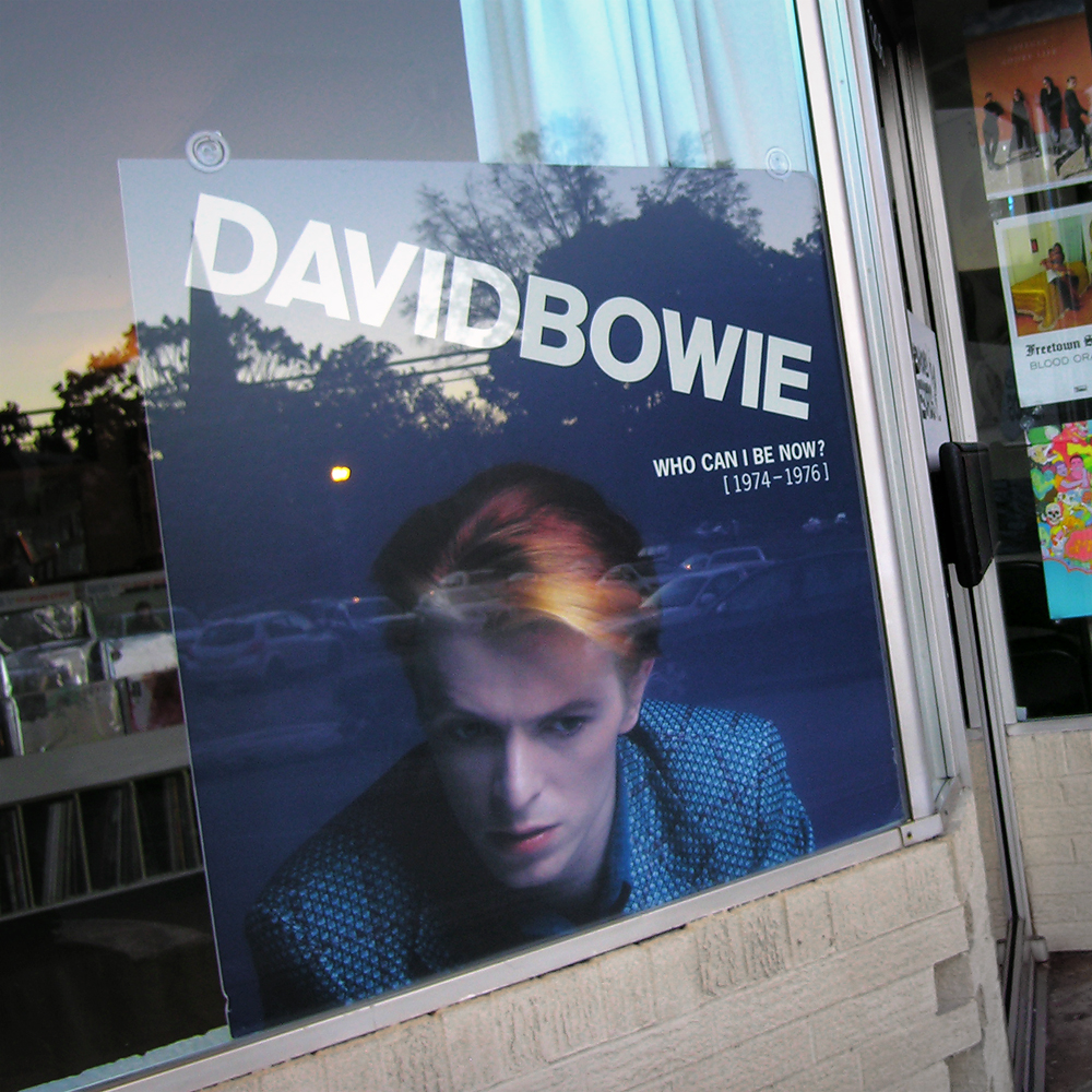 david_bowie_boxset_display_wild_honey_knoxville_tennessee_vinyl_record_store