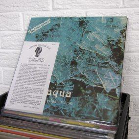 11-o-BE2019-wild-honey-records
