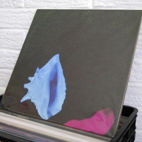 39-vinyl-wild-honey-records-o