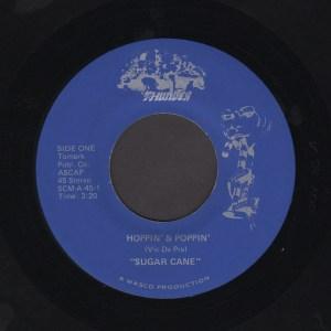 SUGAR CANE 45