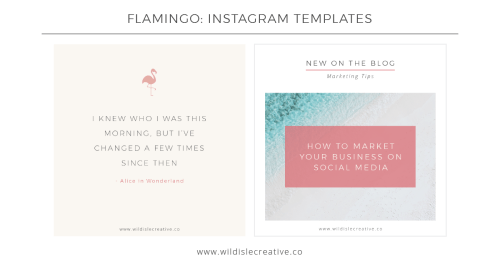 Flamingo - Instagram Template