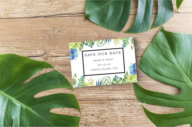 Tropical Leaf StD Set Listing 2