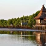 Highlights of Gambia: from River Safaris to Fishing Villages