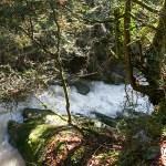 El río Pendís en Otoño