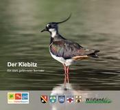 Informationsbroschüre Kiebitz
