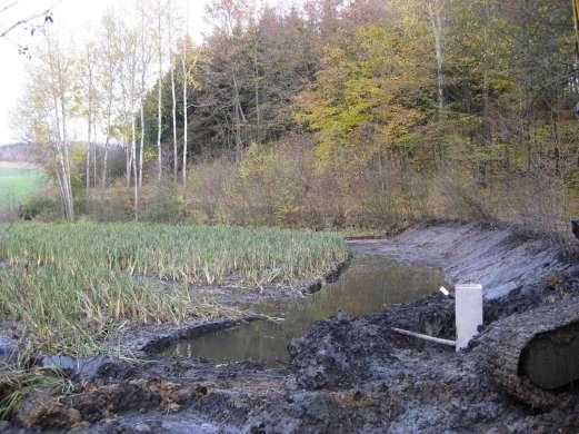 Möncheinbau bei Amphibienweiher © Wildland-Stiftung Bayern