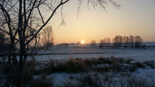 Sonnenaufgang im Thalhamer Moos