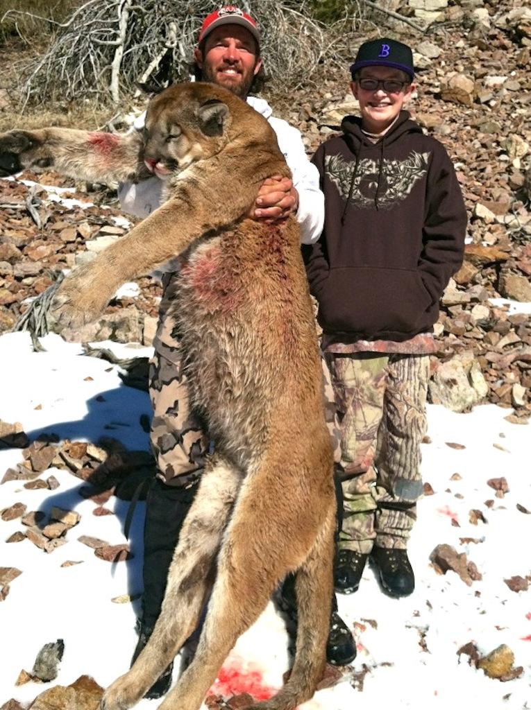 Nevada Lion Western Wildlife Adventures