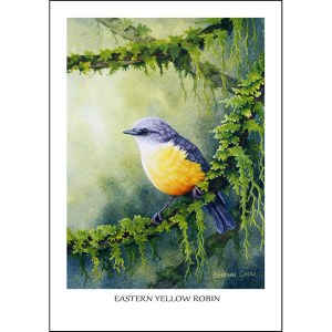 Eastern Yellow Robin - Feathered Fairytale