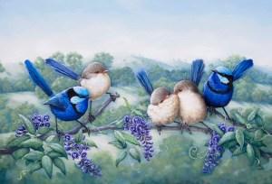 Splendid Wrens Painting