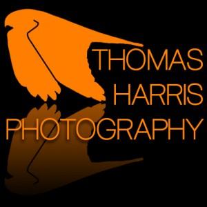 Minsmere - 15/05/14. Thomas Harris Wildlife Photography