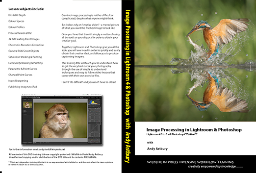 2012 DVD SleeveFLAT Lightroom Tutorial  #1