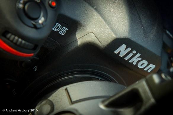 D4D6793 900x599 Nikon D5 Autofocus Test