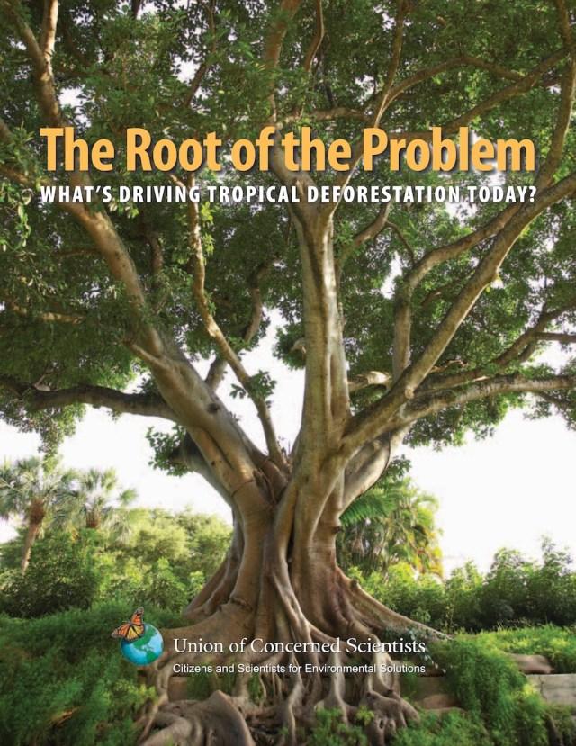ucs_rootoftheproblem_driversofdeforestation_fullreport