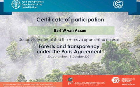 Forests and transparency under the Paris Agreement