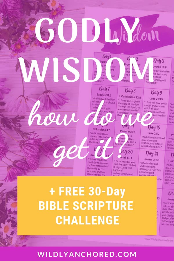 We need Godly wisdom in order to make decisions, live life and deal with situations. Read a scripture a day or scripture write as it pertains to wisdom.